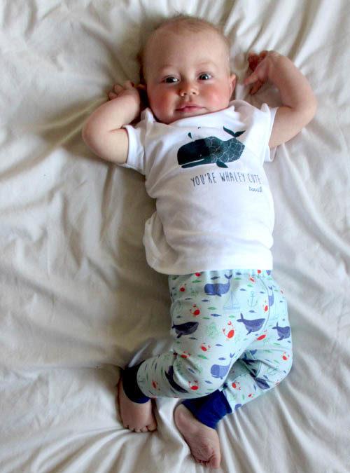 organic whale baby leggings